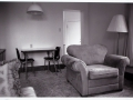 Dawson City Chair